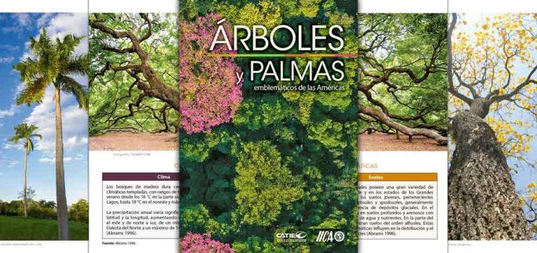 arboles-y-palmas-emblemáticas-de-las_Americas